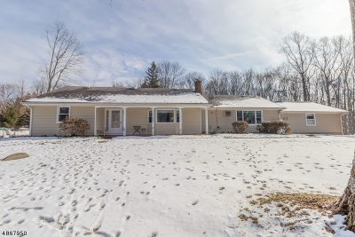 Holland Twp., Milford Boro Single Family Home For Sale: 460 Ellis Rd