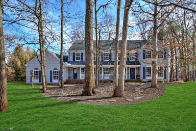 Readington Twp. Single Family Home For Sale: 6 Flintlock Rd