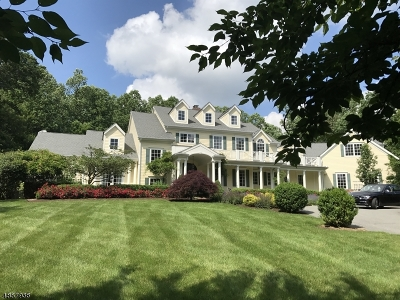 Mendham Boro, Mendham Twp. Single Family Home For Sale: 5 Cramer Ln