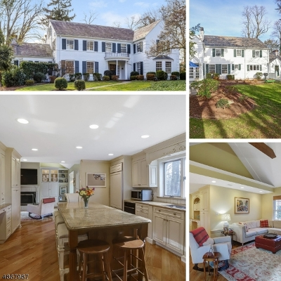 Millburn Twp. Single Family Home For Sale: 41 West Rd