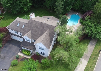 South Brunswick Twp. Single Family Home For Sale: 2 Sarah Ct