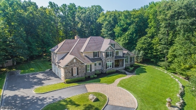 Montville Twp. Single Family Home For Sale: 51a Stony Brook Road