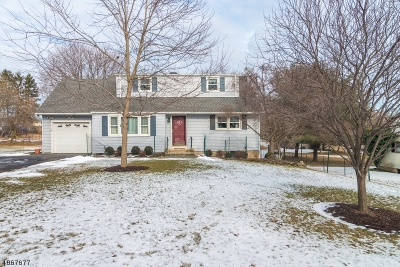 Clinton Town Single Family Home For Sale: 18 Union Rd