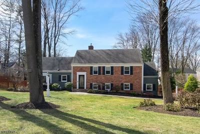Morristown Town, Morris Twp. Single Family Home For Sale: 22 Old Glen Rd