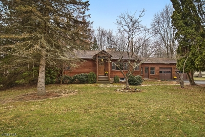 Mendham Boro, Mendham Twp. Single Family Home For Sale: 151 Mendham Rd East
