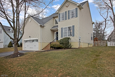 Bridgewater Twp. NJ Single Family Home For Sale: $575,000
