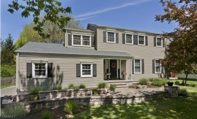 Mendham Boro, Mendham Twp. Single Family Home For Sale: 6 Florie Farm Rd