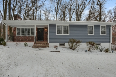 Berkeley Heights Twp. Single Family Home For Sale: 16 Webster Drive