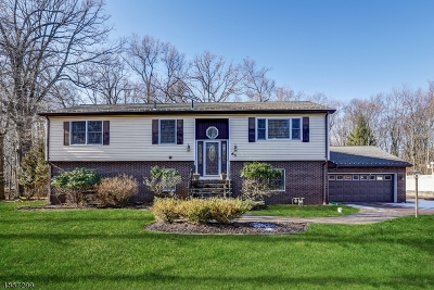 Berkeley Heights Twp. Single Family Home For Sale: 65 Rogers Ave