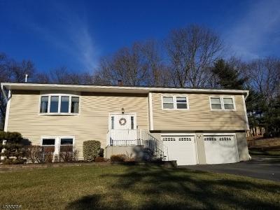 Randolph Twp. Single Family Home For Sale: 36 Sandra Ln