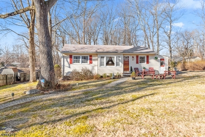 Mount Olive Twp. Single Family Home For Sale: 5 Byron Ave