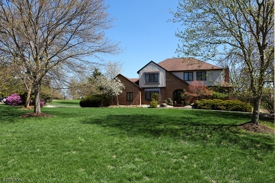 Montgomery Twp. Single Family Home For Sale: 30 Adams Dr