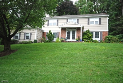 Springfield Single Family Home For Sale: 990 Chimney Ridge Dr