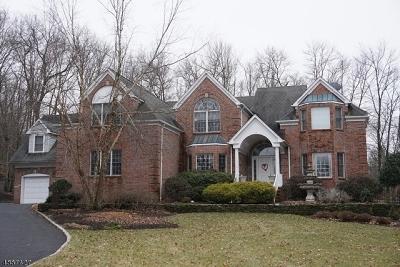 Warren Twp. Single Family Home For Sale: 6 Aspen Ct