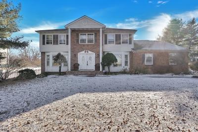 Wayne Twp. Single Family Home For Sale: 160 Jackson Ave