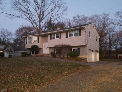 Montgomery Twp. Single Family Home For Sale: 341 Opossum Rd