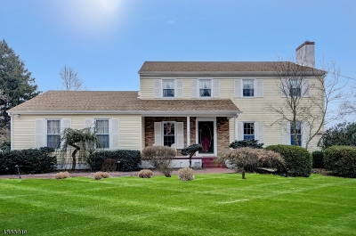 Montgomery Twp. Single Family Home For Sale: 751 Route 518