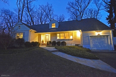 New Providence Single Family Home For Sale: 27 Mountain Ave
