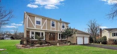 Franklin Twp. Single Family Home For Sale: 20 Nina Ct