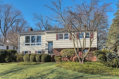Chatham Boro Single Family Home For Sale: 30 Girard Ave