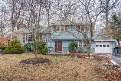 Parsippany-Troy Hills Twp. Single Family Home Sold: 21 Lake Dr
