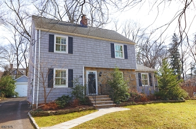 Chatham Boro Single Family Home For Sale: 38 Coleman Ave East