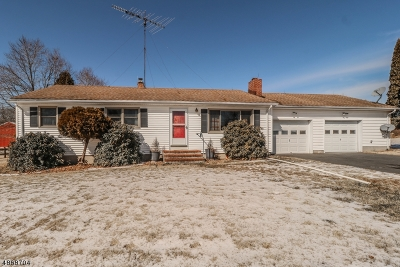 Alexandria Twp. Single Family Home For Sale: 207 County Rd 513