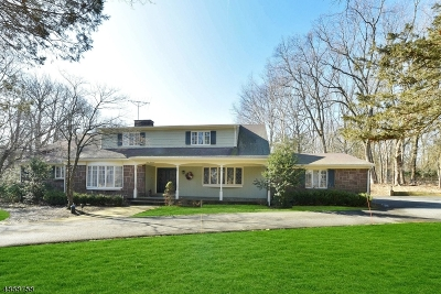 Franklin Lakes Boro Single Family Home For Sale: 300 Indian Trail Dr