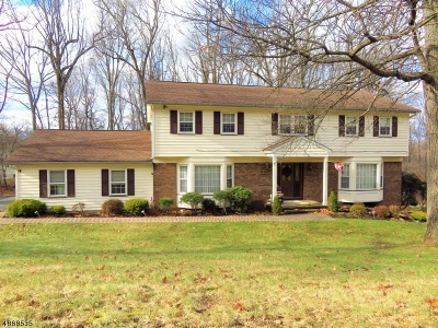 Denville Twp. Single Family Home For Sale: 39 Birch Run Ave