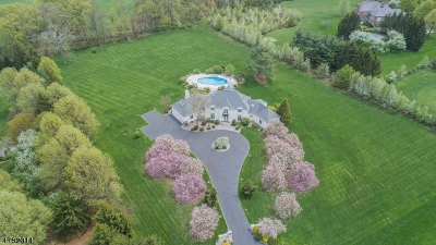 Harding Twp. NJ Single Family Home For Sale: $1,795,000