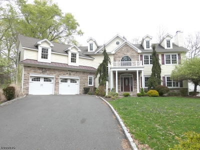 Berkeley Heights Single Family Home For Sale: 150 Circle View Ave