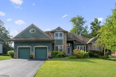 Hardyston Twp. Single Family Home For Sale: 19 Bracken Hill Rd