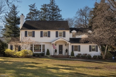 Summit Single Family Home For Sale: 7 Colt Rd