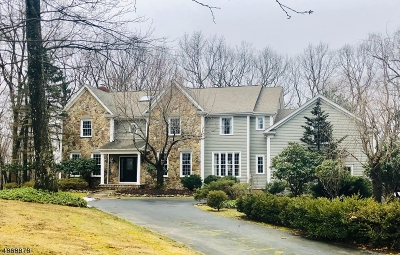 Chester Twp. NJ Single Family Home For Sale: $838,500