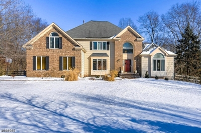 Clinton Twp. Single Family Home For Sale: 28 Chaucer Dr