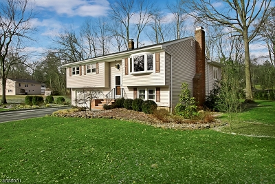 Long Hill Twp Single Family Home For Sale: 22 Woodland Rd