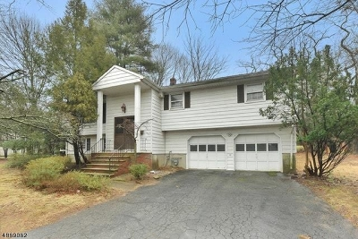 Single Family Home For Sale: 181 Piermont Rd
