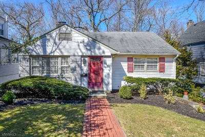 Summit Single Family Home For Sale: 17 Elm Pl