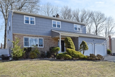 Edison Twp. Single Family Home For Sale: 26 Cottonwood Ct
