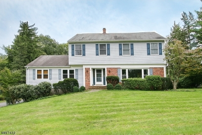 Bedminster Twp. Single Family Home Active Under Contract: 9 Ski Hill Dr