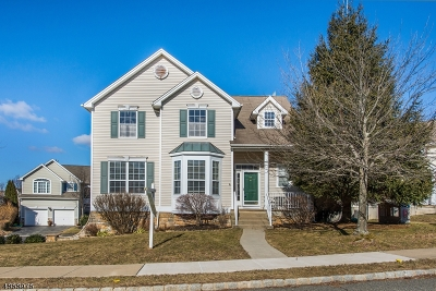 Mount Olive Twp. Single Family Home For Sale: 196 Winding Hill Dr