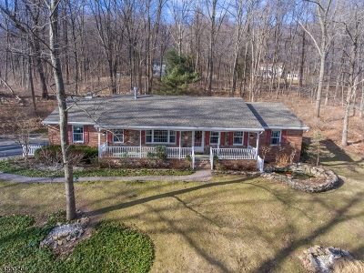 Bethlehem Twp. Single Family Home For Sale: 123 Black Brook Rd