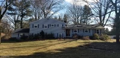 Long Hill Twp Single Family Home For Sale: 51 Circle Dr