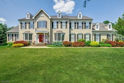 Bernards Twp., Bernardsville Boro Single Family Home For Sale: 20 Squire Ct