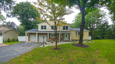 Mendham Boro, Mendham Twp. Single Family Home For Sale: 10 Franklin Rd