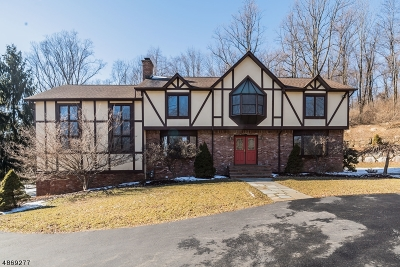 Chester Twp. NJ Single Family Home For Sale: $625,400