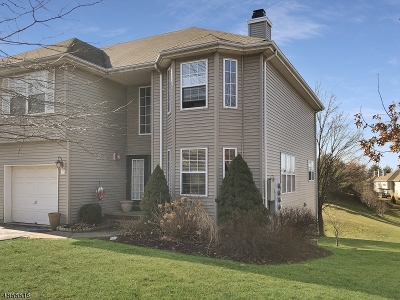 Hunterdon County Condo/Townhouse For Sale: 21 Spring Brook Dr