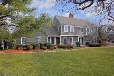 Bernards Twp. Single Family Home For Sale: 35 Washington Ave