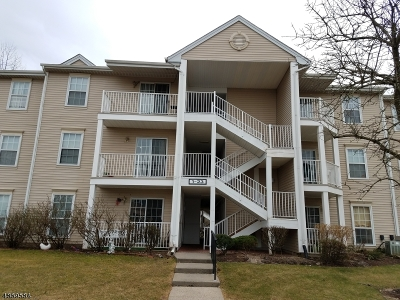 Franklin Twp. Condo/Townhouse For Sale: 17 Lindsey Ct #17