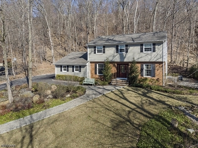 Bridgewater Twp. Single Family Home For Sale: 816 Star View Way